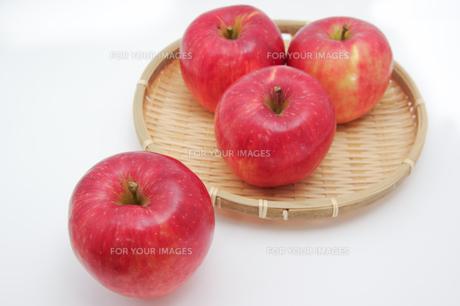 秋の味覚、林檎の写真素材 [FYI00894981]