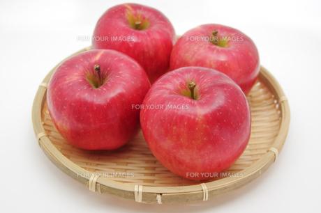 秋の味覚、林檎の写真素材 [FYI00894987]