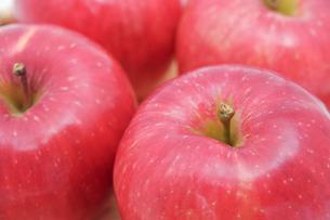 秋の味覚、林檎の写真素材 [FYI00894991]