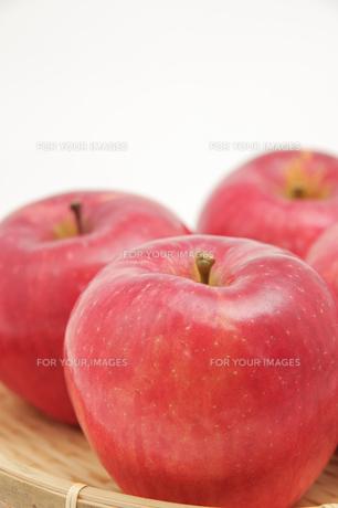 秋の味覚、林檎の写真素材 [FYI00894995]