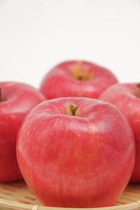 秋の味覚、林檎の写真素材 [FYI00894997]