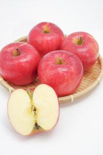 秋の味覚、林檎の写真素材 [FYI00895005]