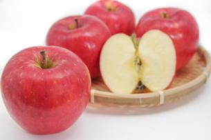 秋の味覚、林檎の写真素材 [FYI00895022]
