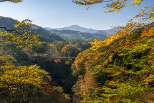 雪割橋と紅葉の写真素材 [FYI00895034]