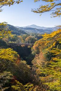 雪割橋と紅葉の写真素材 [FYI00895036]