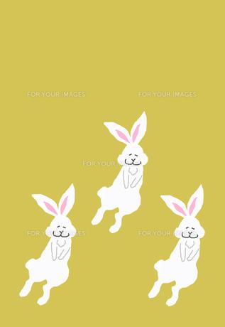 三匹のウサギ 黄色背景の素材 [FYI00895869]
