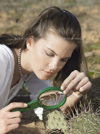 Woman examining cactusの素材 [FYI00900920]