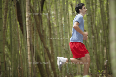 Young man jogging in forestの素材 [FYI00901371]