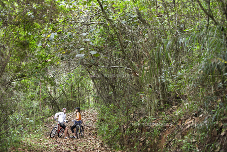 Two cyclists talking in forestの素材 [FYI00901376]