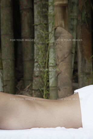 Womans bare back, trees in backgroundの素材 [FYI00901452]