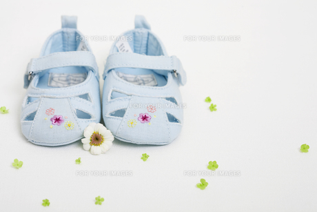 Blue baby shoesの素材 [FYI00902829]