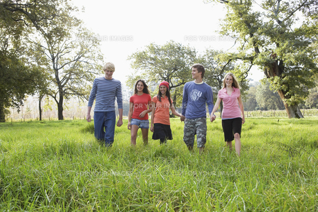 Five teenagers walking in fieldの素材 [FYI00903261]