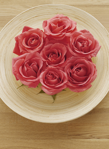 Red Roses on Plateの素材 [FYI00905166]
