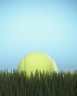 Tennis Ball on Grassの素材 [FYI00905301]