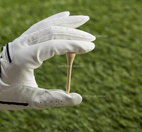 Human Hand Holding Golf Teeの素材 [FYI00905310]
