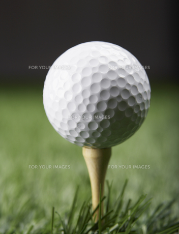 Golf Ball on Golf Teeの素材 [FYI00905314]