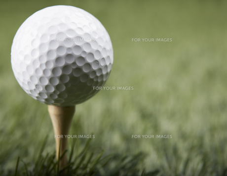Golf Ball on Golf Teeの素材 [FYI00905331]