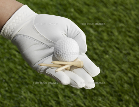 Golf Tees and Ball in Handの素材 [FYI00905333]