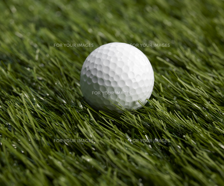 Single Golf Ballの素材 [FYI00905338]