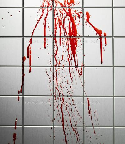 Blood on Tiled Wallの素材 [FYI00905492]