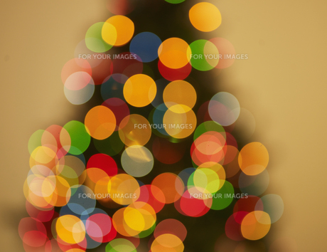 Blurred View of Christmas Treeの素材 [FYI00906225]