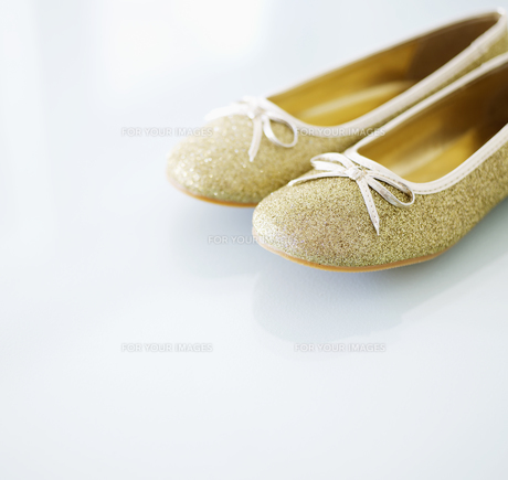 Pair of Shoesの素材 [FYI00906328]