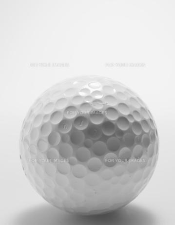 Single Golf Ballの素材 [FYI00907169]