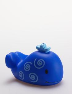 Single Toy Whaleの素材 [FYI00907362]