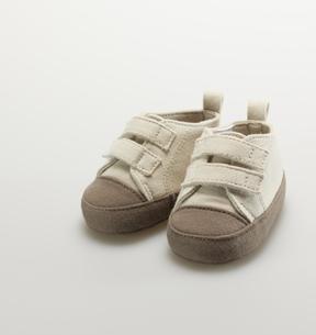 Baby Sneakersの素材 [FYI00907364]