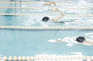 プールで泳ぐ男女の素材 [FYI00908851]