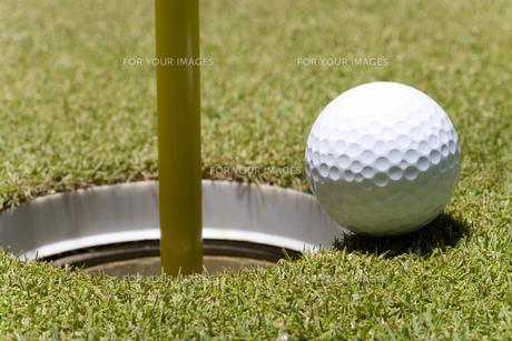 ゴルフボールとカップの素材 [FYI00911318]
