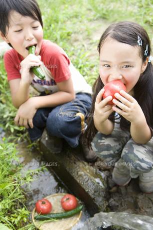 野菜をかじる子供の素材 [FYI00911348]