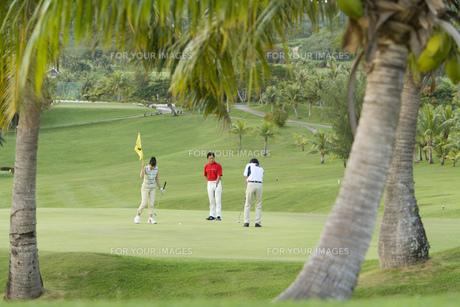 ゴルフをする日本人男女グループの素材 [FYI00911359]