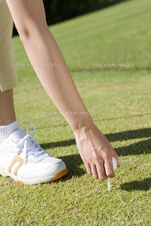 ティーを刺す女性ゴルファーの素材 [FYI00911391]