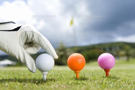 ボールを置くゴルファーの手の素材 [FYI00911422]