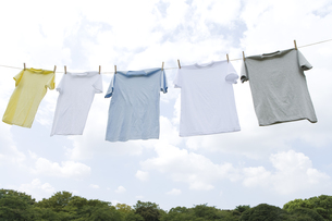空の下に干された五枚のTシャツの素材 [FYI00913404]