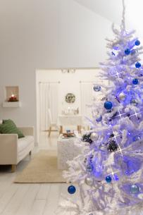 大きなクリスマスツリーがあるリビングの素材 [FYI00914635]
