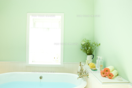 ニゲラを飾った明るい日差しのバスルームの素材 [FYI00914667]