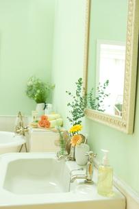 ユーカリとシッシングハーストローズマリーを飾った洗面所の素材 [FYI00914728]