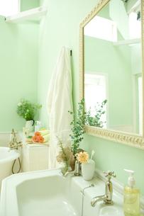 ユーカリとシッシングハーストローズマリーを飾った洗面所の素材 [FYI00914763]