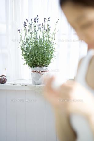 ラベンダーの鉢植えとネイルケアをする女性の素材 [FYI00914958]