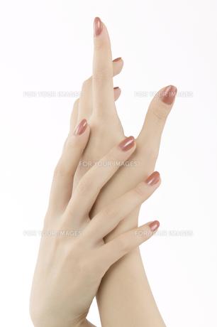 女性の手の素材 [FYI00915477]