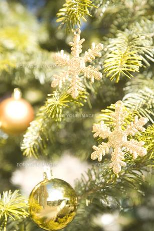 屋外のクリスマスツリーとオーナメントの素材 [FYI00916380]
