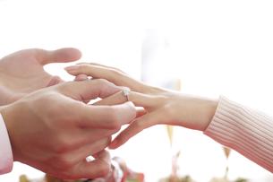 女性の手に指輪をはめる男性の素材 [FYI00916465]