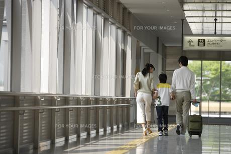 3人で歩く家族の後姿の素材 [FYI00916528]