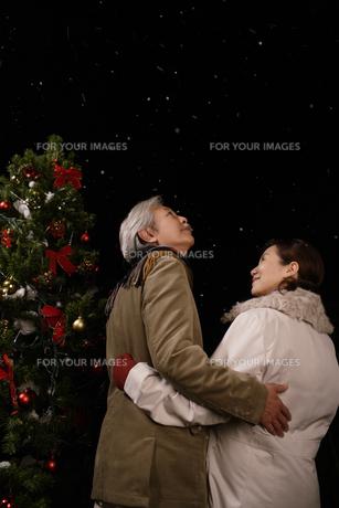 ツリーの横で夜空を見上げる夫婦の素材 [FYI00916533]
