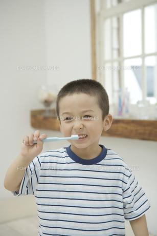 歯磨きをする男の子の素材 [FYI00919135]