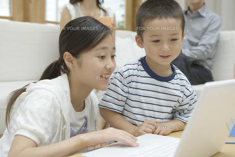 パソコンをする姉と弟の素材 [FYI00919204]