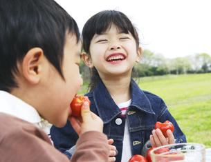 草原でピクニックを楽しむ子供の素材 [FYI00919843]