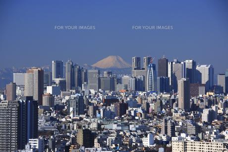新宿ビル群と富士山の素材 [FYI00919853]